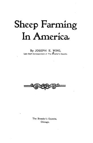 Sheep farming in America.